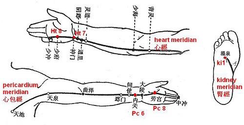 Ra mồ hôi tay chân điều trị tận gốc bằng đông y 1 Ra mồ hôi tay chân điều trị tận gốc bằng đông y