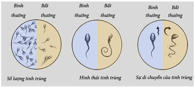 TINH VŨ HOÀN